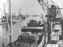 Historic picture from the Port of Norrköping